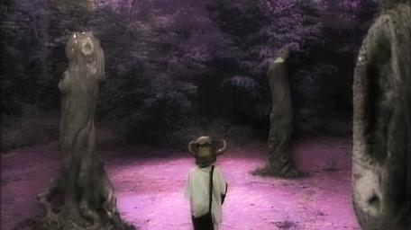 The Forest of Dun, as seen in Series 4 of Knightmare (1990).